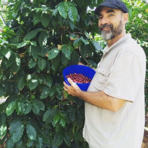 Martin_coffee_picking-2015