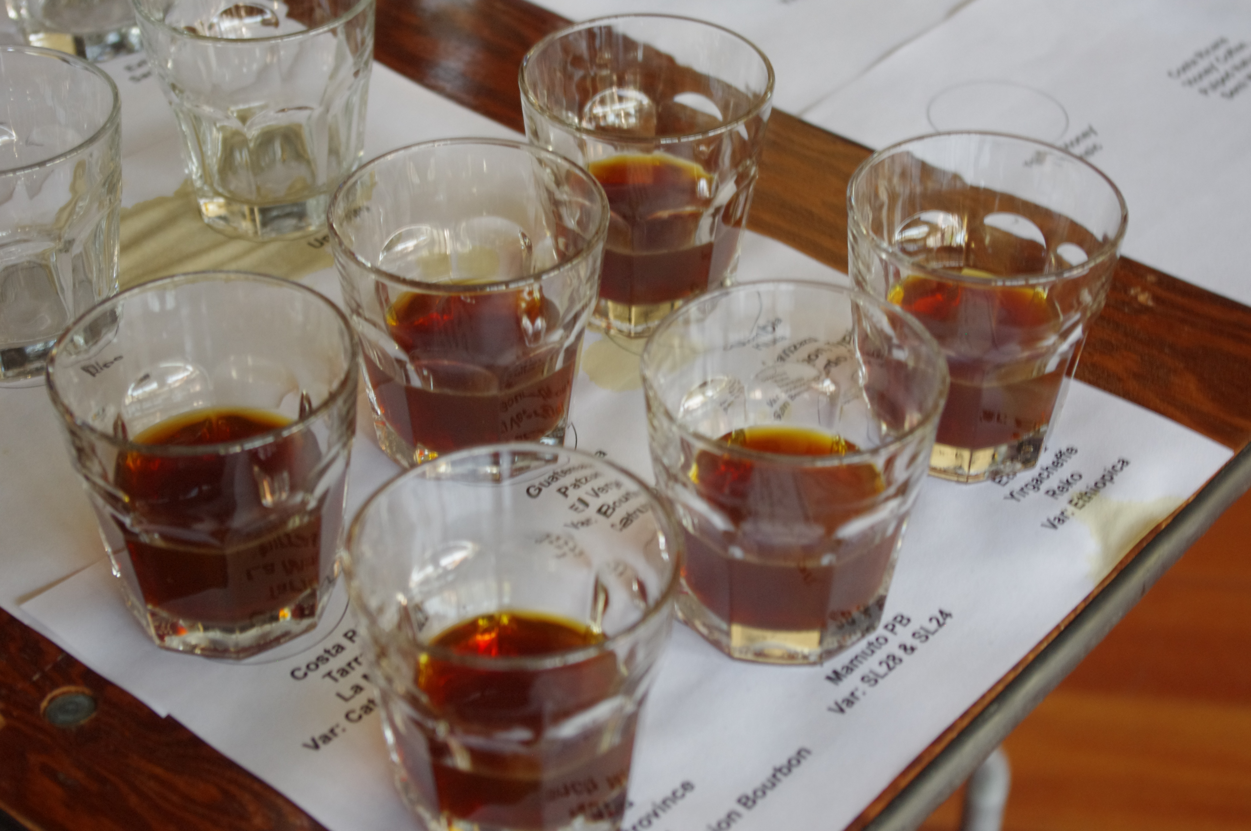 Taste like a Pro at CoffeeCon s Coffee Tasting Seminar and