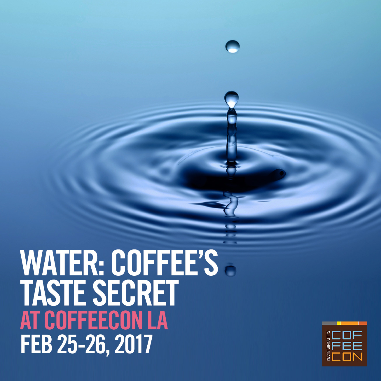 Water: Coffee's Taste Secret with Tim Beall